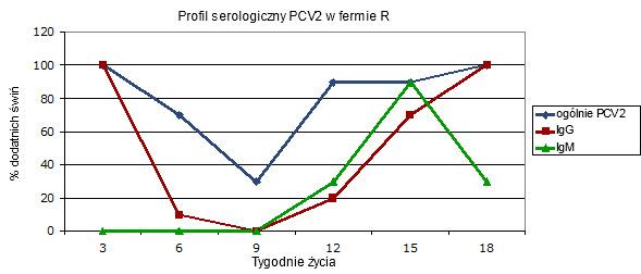 Profil serologiczny w fermie gdzie występuje kliniczna postać infekcji cirkowirusowej i gdzie nie stosuje się szczepień przeciw PCV2.