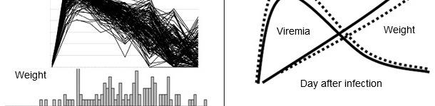 Skutki zakażenia PRRSV na poziomie populacji. Powyższa rycina przedstawia wiremię PRRSV (góra) i rozkład przyrostów masy ciała (dół) u 200 świń zakażonych doświadczalnie PRRSV.