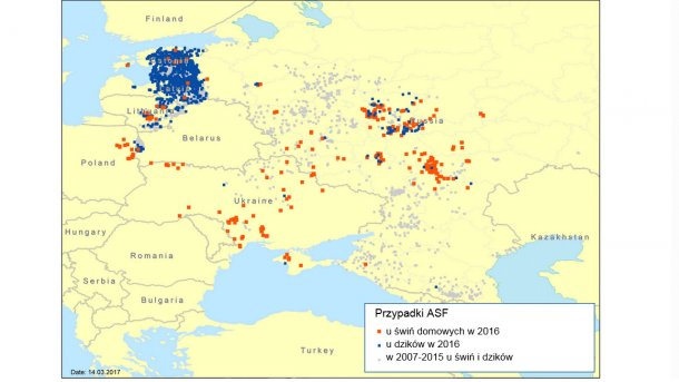 Notifications of ASF in the Eastern Europe region in 2007–2016