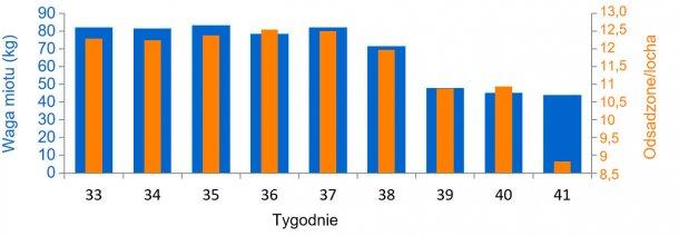 Wykres 3. Średnia liczba i waga odsadzonych prosią przed i po wybuchu PED (od tygodnia 38).