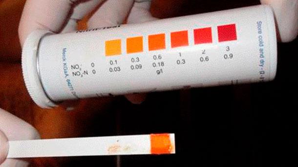 Ryc. 5: Pasek z testem na obecność azotynów, wskazujący na zatrucie.