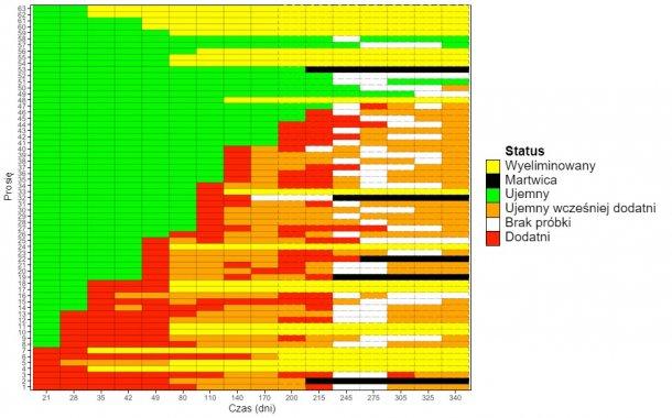 Rys 1. Schemat (heat map) przedstawiający wykrywanie M. hyopneumoniae u loszek na przestrzeni czasu.
