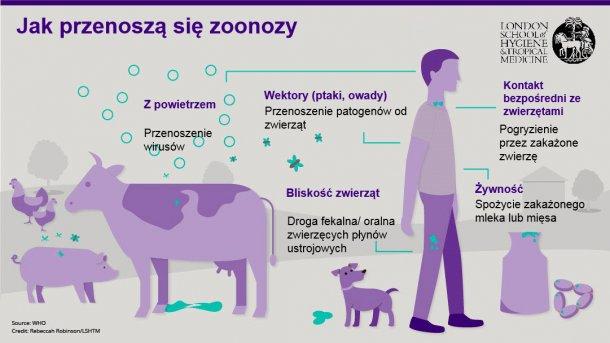 Ryc. 1. Drogi transmisji chorób zoonotycznych. Choroby odzwierzęce to choroby zakaźne, które mogą być przenoszone ze zwierząt na ludzi, ale także od ludzi na zwierzęta. Źródło: London School of Hygiene and Tropical Medicine.