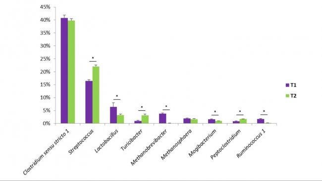 Wykres 1. Niektóre rodzaje bakterii znajdują się w odchodach świń. T1 jest kontrolą. T2 to grupa z dodatkiem mieszaniny Bacillus w paszy.