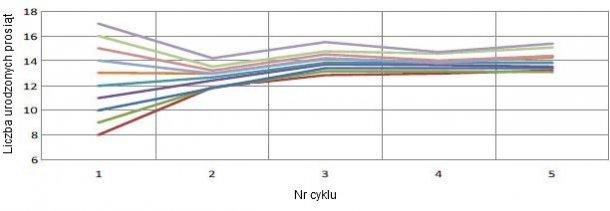 Wykres 1. Zmiana plenności w oparciu o plenność przy pierwszym porodzie. Na każde urodzone prosię (TB) przy pierwszym porodzie, przypada 0.4 więcej TB z każdym kolejnym cyklem produkcyjnym.