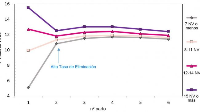 Graph 1. Production throughout the lifetimeof the sow according to piglets born.