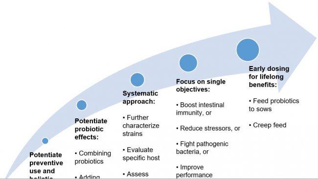 Ryc. 2. Strategie mające na celu poprawę stosowania probiotyków we wczesnych etapach życia