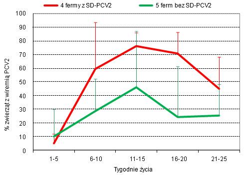 Odsetek prosiąt z wiremią PCV2 w fermach z, lub bez PCV2-SD (na podstawie Sibila i wsp. 2004 Am J Vet Res)