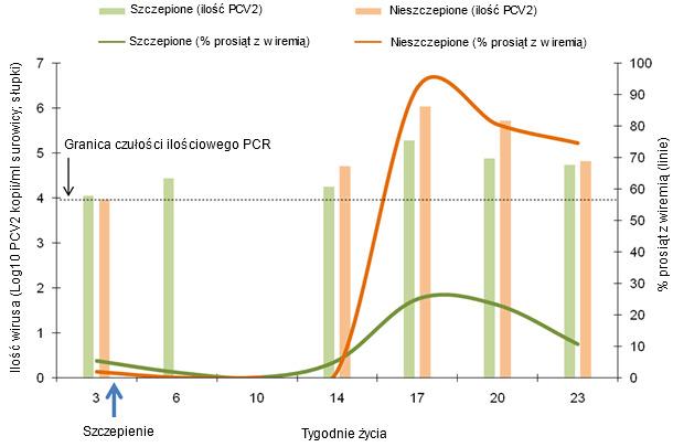Porównanie dynamiki odsetka wiremicznych prosiąt (linie) i ich średniego poziomu wiremii (słupki). Pomiarów dokonano u prosiąt szczepionych w 3 tygodniu życia przy pomocy ilościowego testu PCR