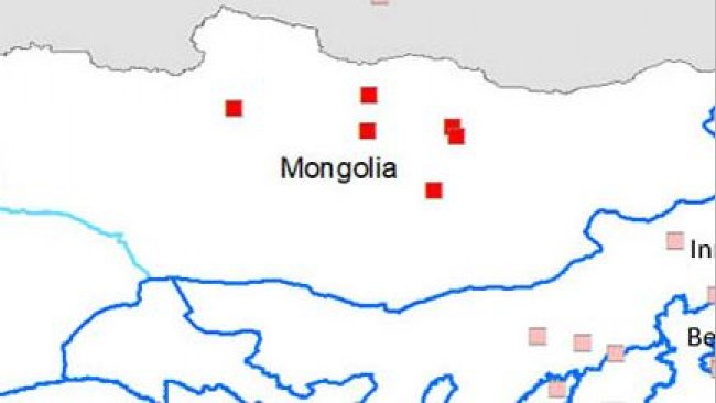 Affected provinces: Bulgan, Orkhon, Tuv and Dundgovi, as well as the district of Bayangol, in Ulaanbaatar.