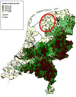 Dystrybucja ferm świń w Holandii i obszar programu zwalczania PRRSV (zaznaczony na czerwono)