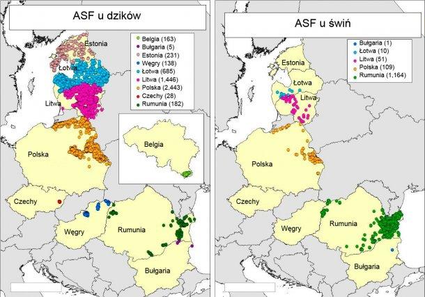 Mapa ognisk i przypadków ASF z Belgii, Bułgarii, Estonii, Węgier, Łotwy, Litwy, Polski, Czech i Rumunii w 2018r. (źródło: RASVE-ADNS)