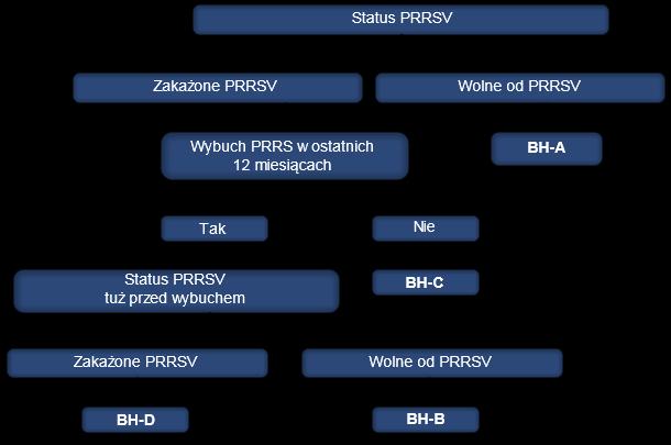 Klasyfikacja stad loch pod względem statusu PRRS