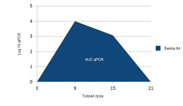 Example of calculation of the AUC of PCV2 qPCR for each individual