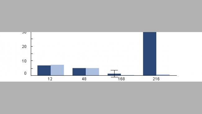 Przeżywalność wewnątrzkomórkowa H. parasuis w makrofagach pęcherzykowych, pobranych od zakażonych wcześniej PRRSv świń.