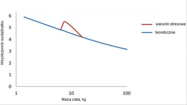 Water/protein ratio in swine from birth to finish and the deviation that occurs following weaning