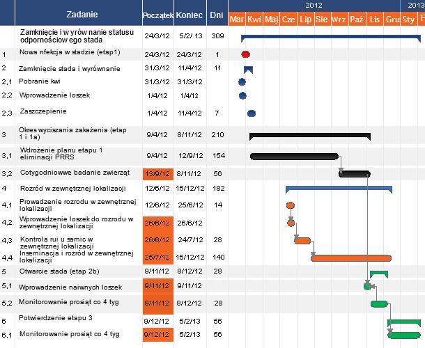 Schemat 1: Przykładowa oś czasu obrazująca proces eliminacji PRRS modelem ZZW.